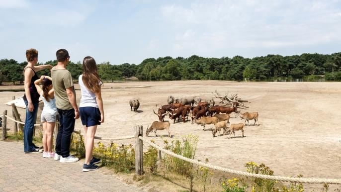 onbeperkt 50% korting op een dagtocht naar Safaripark Beekse Bergen